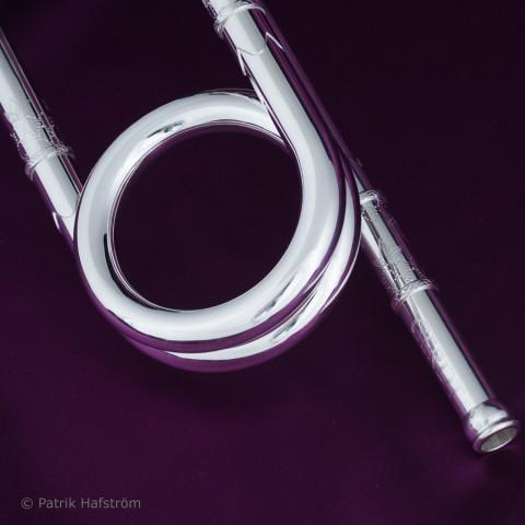 Silvertrumpeter